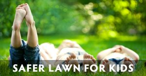 Wisconsin safe lawns for kids