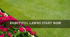 Beautiful Lawns Start Now Milwaukee